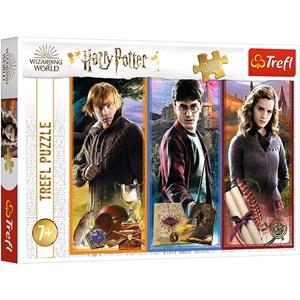"Trefl (13277) - ""Harry Potter"" - 200 pezzi"